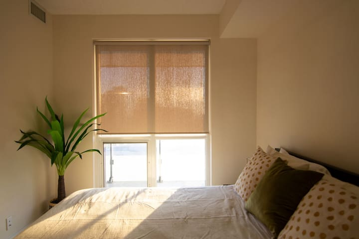 Sun-Filled, Elegant Suite in Downtown Toronto