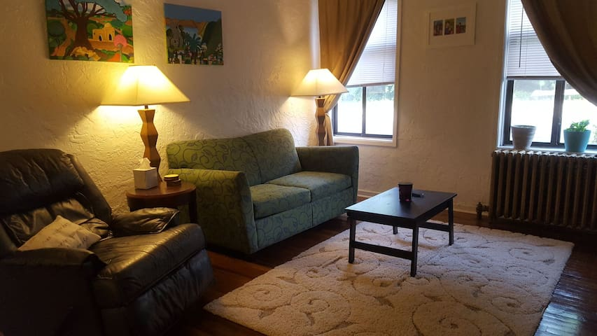 Spacious and cute apartment in Squirrel Hill