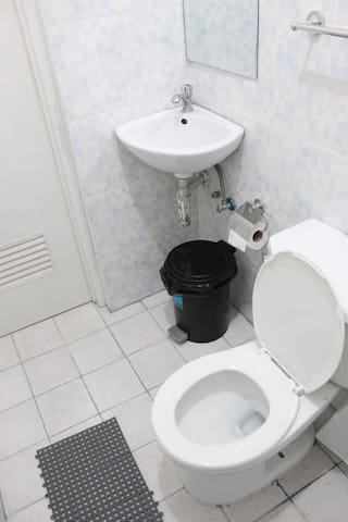 Clean Toilet and Lavatory