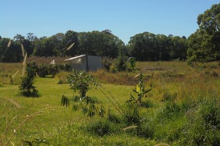 "Cabin on ""Tigergrass Island"" - Mullumbimby"