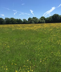 Meadow Flexible use 40-120 guests - Tenterden - Diğer