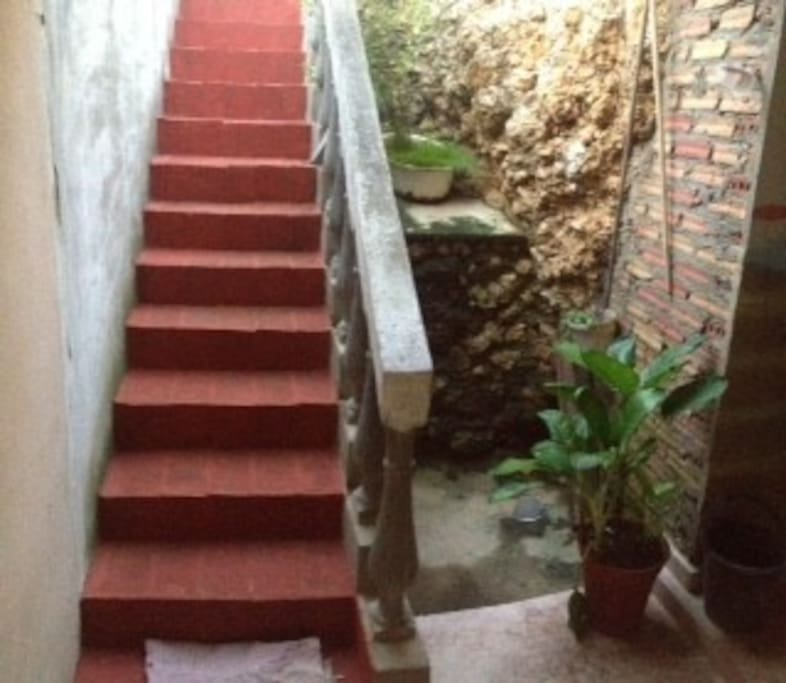 Stairs at the back of the house up to the patio