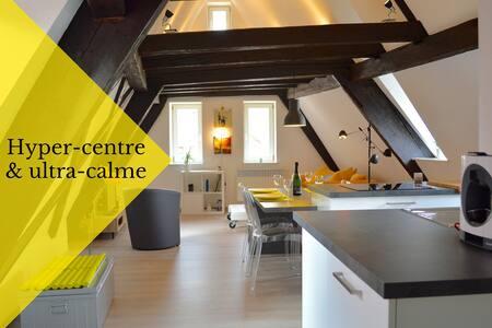 Charmant et calme - en hyper centre de Colmar - Colmar - Apartamento