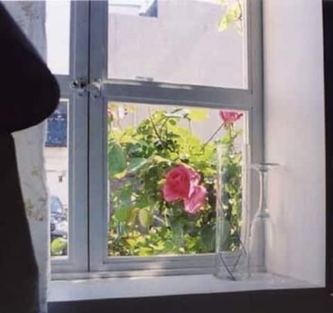 私の家/Qu' est que Tu pense de la Maison rose enMAl