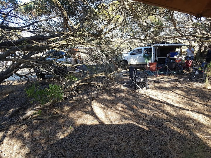 Nilgen Nature Camp / bush camping