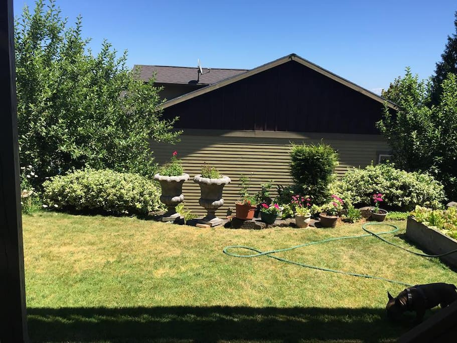 Lower access to beautiful backyard