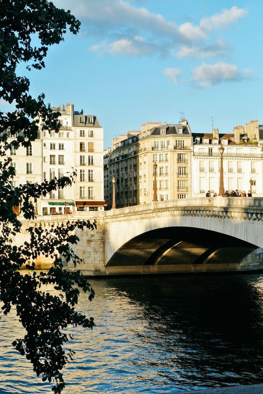a bridge over the river in paris