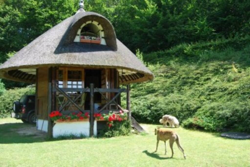 Notre petite maison en lisière de forêt domaniale fera aussi le bonheur de vos animaux de compagnie