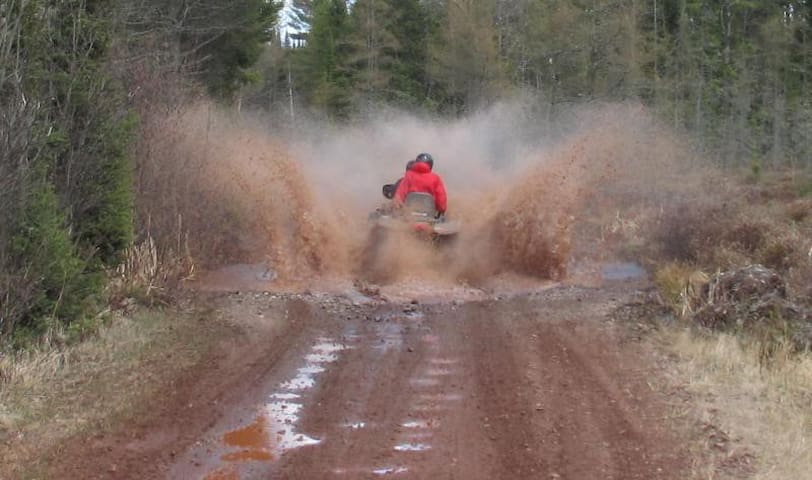 ORV TRAIL!GAMEROOM!14+ LAKES!RIVERS!FALLS!FOREST!