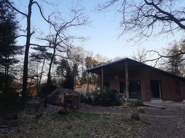 Bos-huis studio in bosgebied  Boschhuizen (31m2)