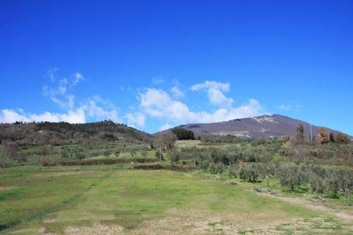 Bilocale ai piedi del monte Cetona. - Cetona