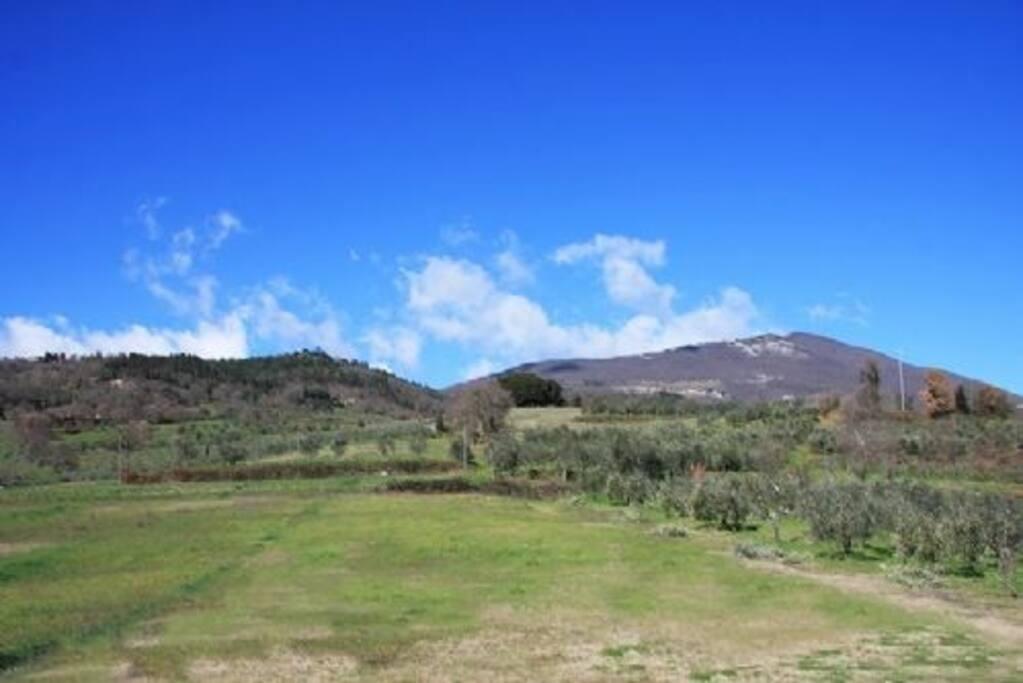il monte Cetona in primavera