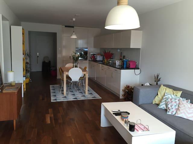 Appartement design proche transport - Dietikon - Apartment