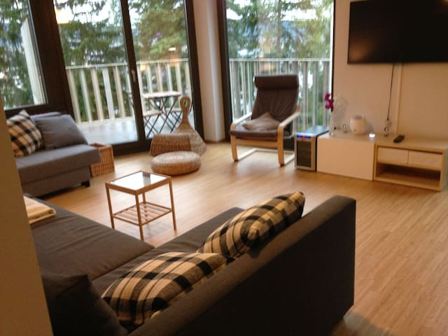 Nice modern flat with terrace! - Curych - Byt