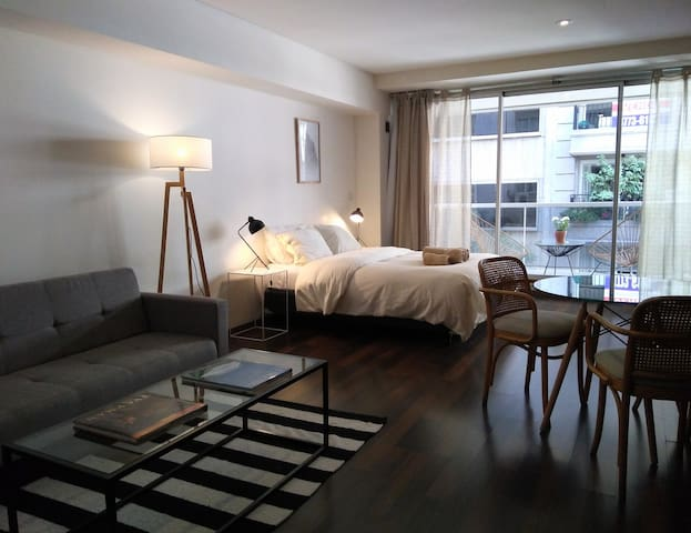 Lovely and spacious studio apartment in Recoleta