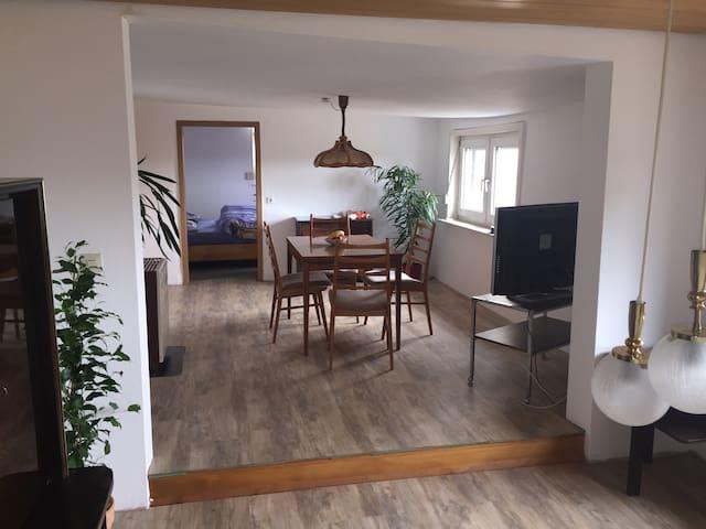 Freistehendes Haus m. 2 Zi. Wohnung - Lauffen am Neckar - Casa