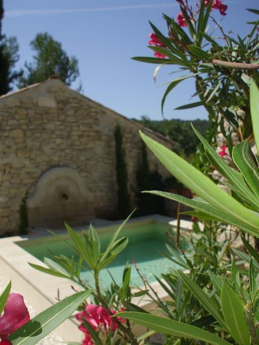 Bassin provençal