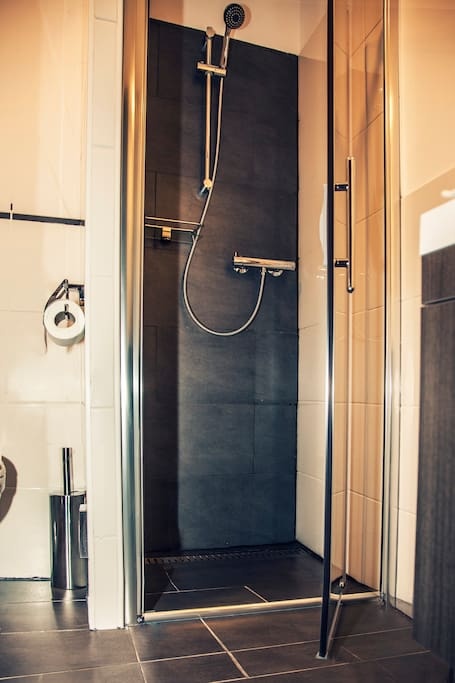 Private bathroom - the shower