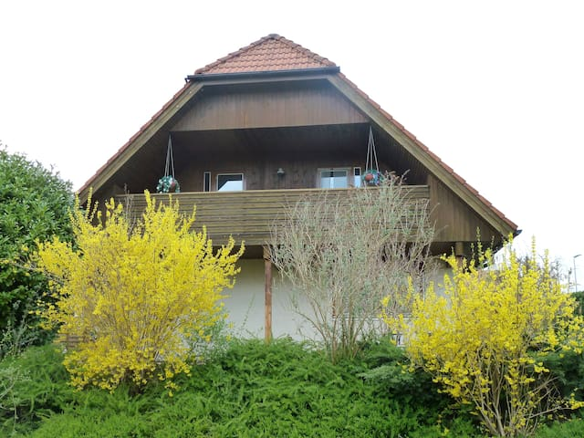 Luxury house with all amenities - Walperswil - Ház