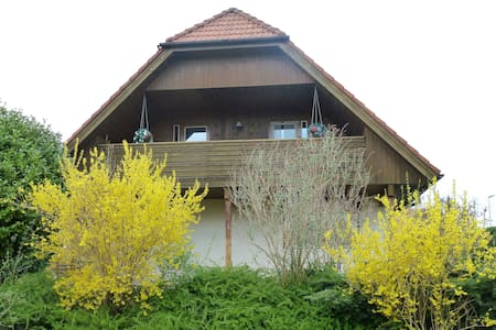 Luxury house with all amenities - Walperswil