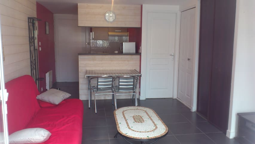 Charmant Appartement Châtel - Châtelaillon-Plage - Huoneisto