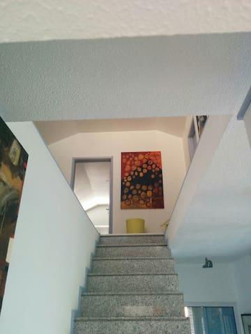 Aguas furtadas em habitação - Murça