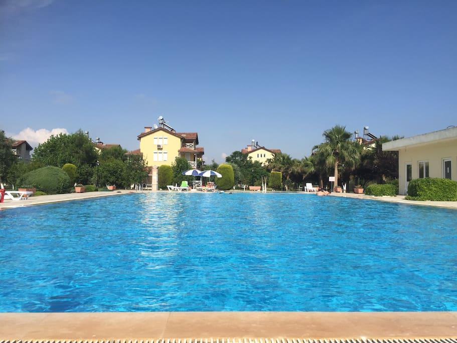 huge swiming pool ..