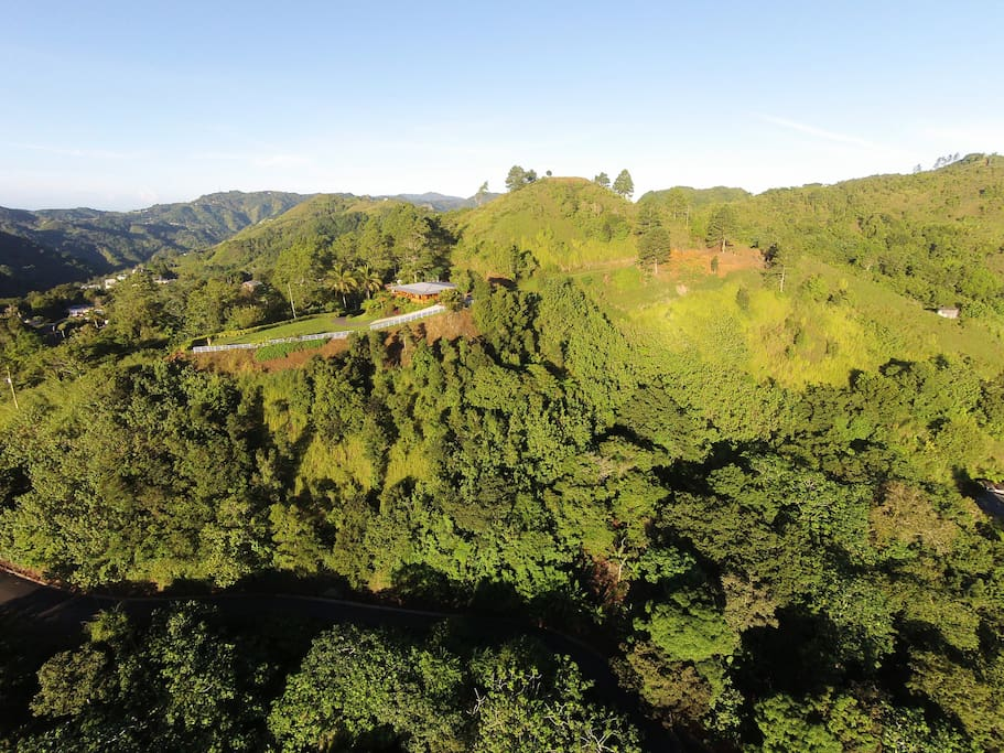 orocovis county singles Toro negro state forest  county ponce / jayuya /  (known in spanish as the mirador villalba-orocovis or the villalba-orocovis lookout) .