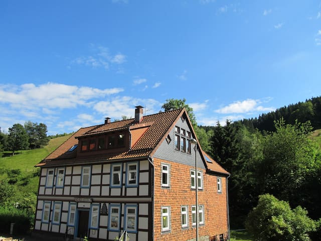 Hexenstieg House Lerbach - Osterode am Harz - Apartment