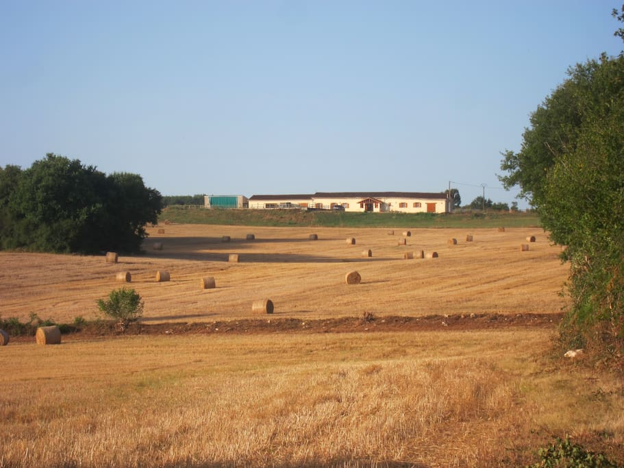 View of house across open fields to front