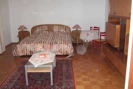 Stadtnahe Einzimmerwohnung mit Garten - Heidenheim an der Brenz