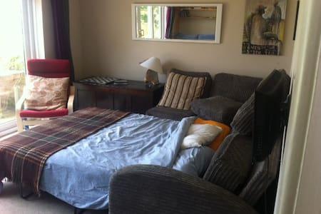 Comfy sofa bed in quirky Totnes. - Totnes