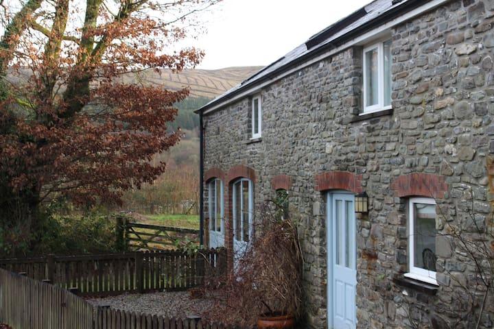 Cartws, a cosy cottage in Rhandirmwyn