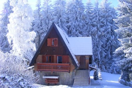 Dobra Villa Dushica - Zlatibor - Blockhütte