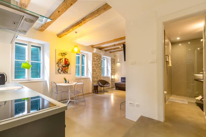Luxury Art Apt in the heart of Diocletian Palace