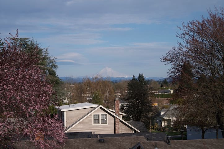 View of Mt Hood from front porch and kitchen!