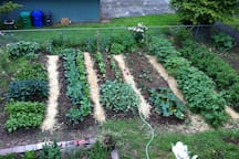 We are avid gardeners!  Feel free to ask for a garden tour.