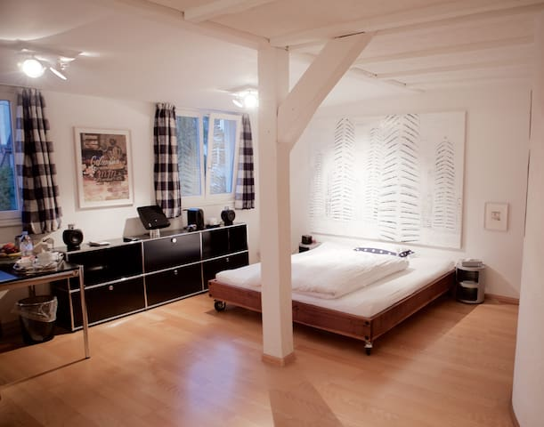 Chez Antoinette, Private Bedrooms - Basel - House