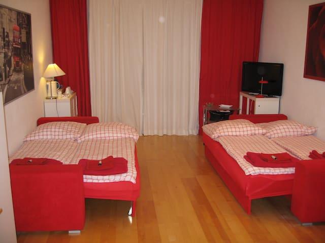 Confortable room am Olympiapark near the U3 - Munic - Pis