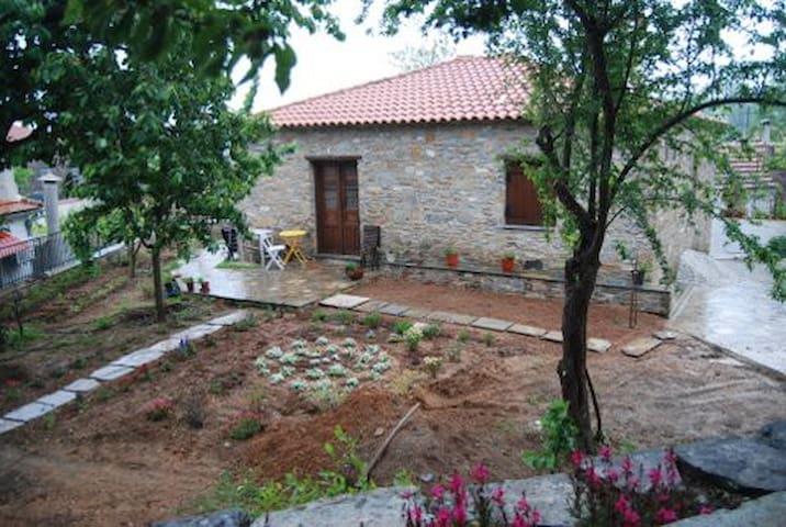 Lafkos Harmony House - Lavkos - Hus