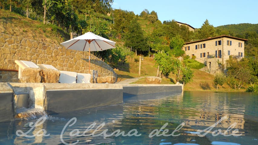 Entire villa in Lucca - infinity pool + vineyard