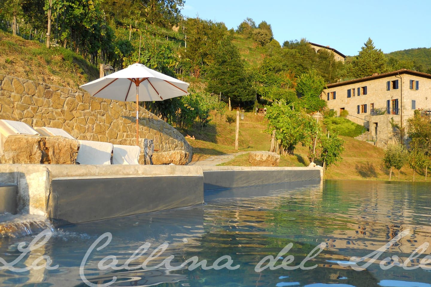 View from infinity pool and vineyard