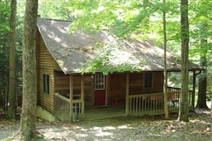 Mingo Cabin - Rockbridge - Kisház