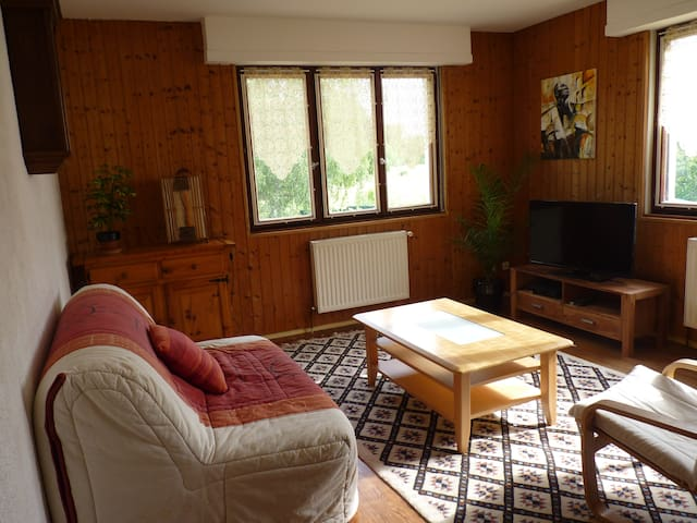 House with garden in Colmar 100m² - Colmar - Huis