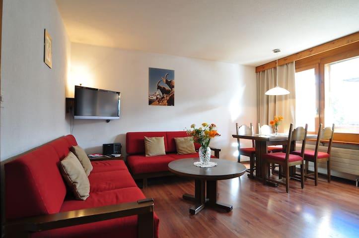 Apartment Dolomit Zermatt Nr. 23 - Zermatt - Appartement