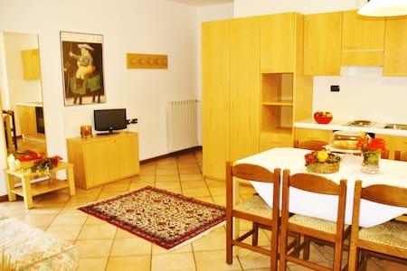 Residence Stella Alpina- Bilocale 4 - Aprica
