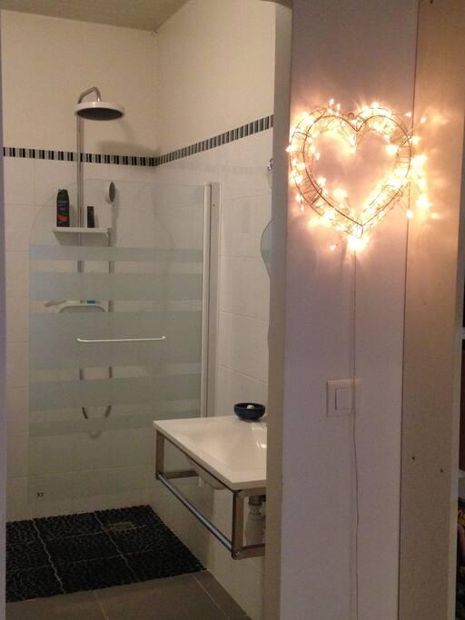 la salle de bain vous sera privative, elle dispose d'une douche à l'italienne