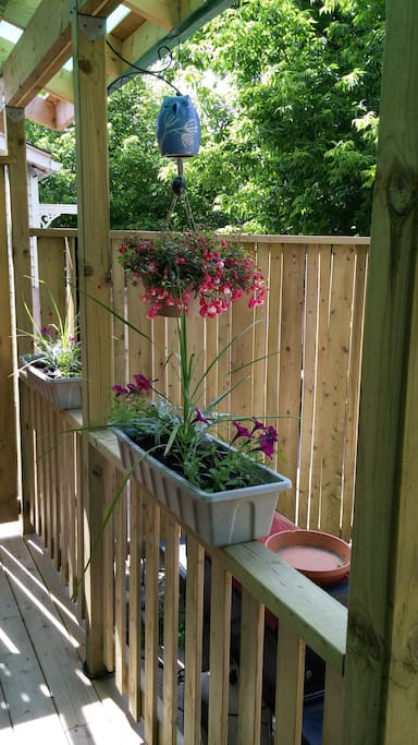 Lovely flowers to accent the deck..