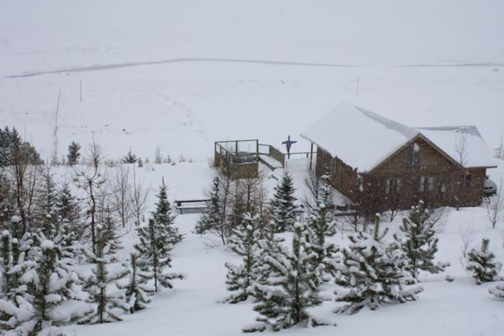 The wintertime