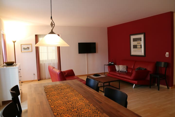 70sqm family apartment in the SPA quarter - Baden - Apartment